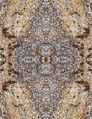 Photograph - Kaleidoscope - Lichens 1 by Andy Shomock