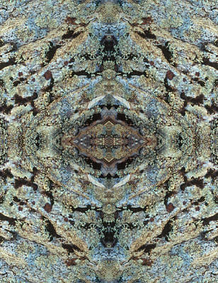 Photograph - Kaleidoscope - Lichens 3 by Andy Shomock