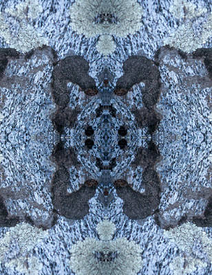 Photograph - Kaleidoscope - Lichens 4 by Andy Shomock