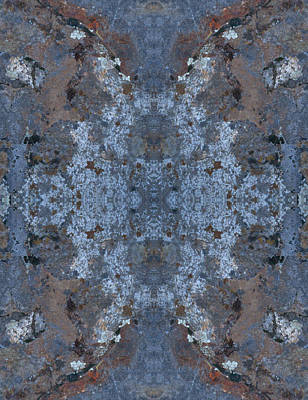 Photograph - Kaleidoscope - Lichens 5 by Andy Shomock