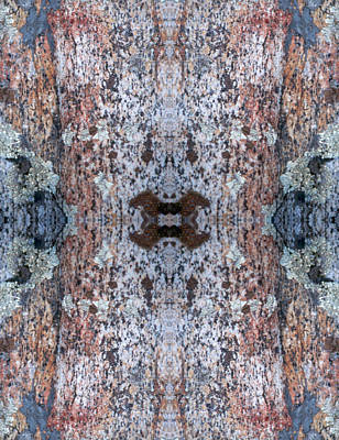Photograph - Kaleidoscope - Lichens 6 by Andy Shomock