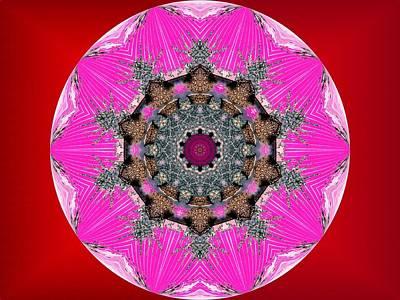 Digital Art - Kaleidoscope by Mike Breau