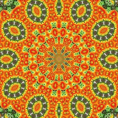 Photograph - Kaleidoscope Of Bold Orange Gazanias by Tracey Harrington-Simpson