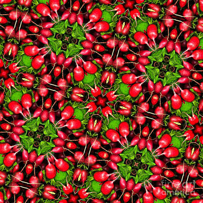 Kaleidoscope Radishes Print by Amy Cicconi