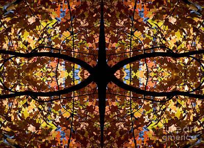 Photograph - Kaleidoscope by Steven Ralser