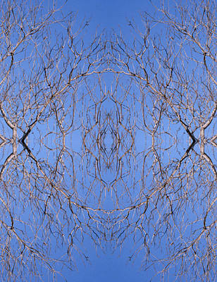 Kaleidoscope - Trees 2-1 Art Print
