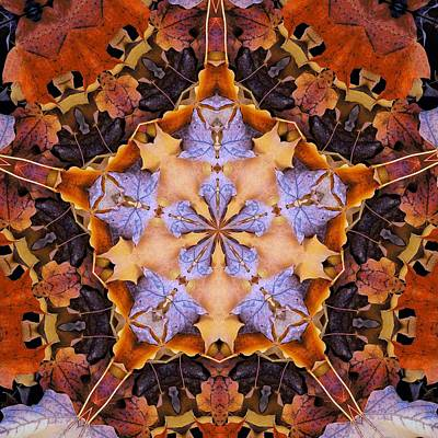 Photograph - Kaleidoscopic Leaves by Ron Grafe