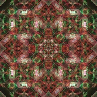 Photograph - Kaleidoscopic Mandala  by Gregory Scott