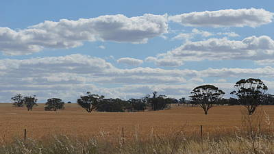 Photograph - Kalgoorlie Countryside by Cheryl Miller
