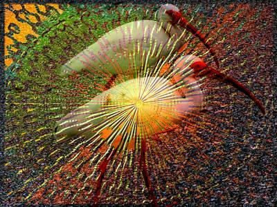 Ibis Digital Art - Kalidescope Of Ibis by Irma BACKELANT GALLERIES