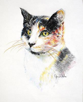 Drawing - Kallie by James Skiles