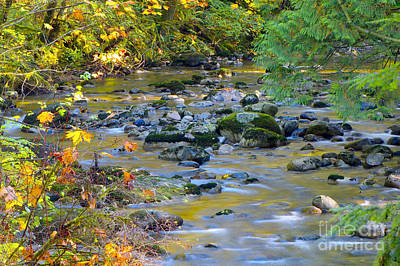 Photograph - Kanaka Creek In The Fall by Sharon Talson