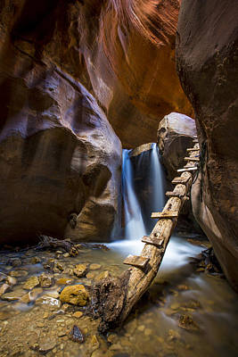Photograph - Kanarra Creek Slot Canyon by Dave Cleaveland