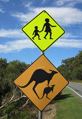 Photograph - Kangaroo Crossing by Ramona Johnston