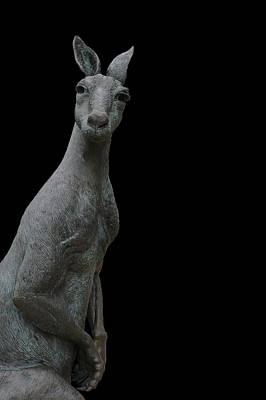 Kangaroo Smith On Black Art Print by Gregory Smith