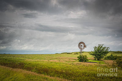Kansas Prairie Original