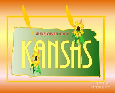 Drawing - Kansas Sunflower State by Belinda Threeths