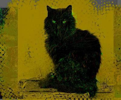Photograph - Karmi Church Cat by Jim Vance