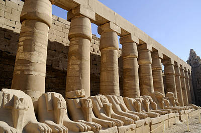 Photograph - Karnak Temple Egypt by Brenda Kean