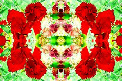 Photograph - Karnation Kaleidoscope by Marianne Dow