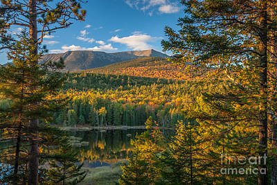 Photograph - Katahdin At Abol Wetland by Susan Cole Kelly