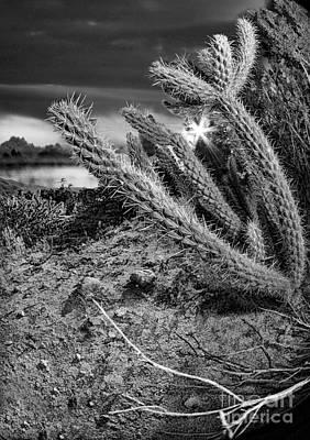 Photograph - Katas And Lake by Blake Richards