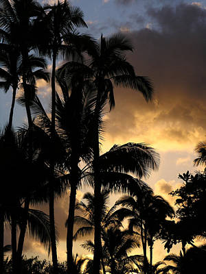 Photograph - Kauai Sunrise by Robert Lozen