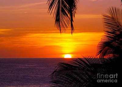 Kauai Sunset Art Print by Patricia Griffin Brett