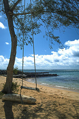 Photograph - Kauai Tree Swing by Michael Yeager