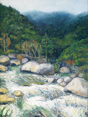 Painting - Kaweah River by Barbara Oertli