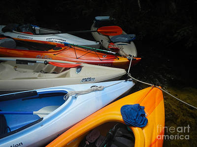 Photograph - Kayak Adventure by Denise Ellis
