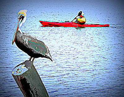 Photograph - Kayaking Florida Gulf Coast 1 by Sheri McLeroy