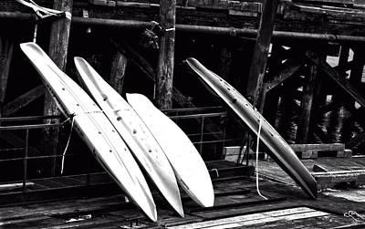 Reptiles - Kayaks On Deck by Image Takers Photography LLC - Carol Haddon