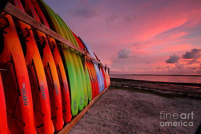 Photograph - Kayaks On Dunedin Causeway by Jennifer Zelik