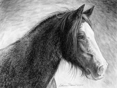 Draft Horse Drawing - Kaylee by Katherine Plumer