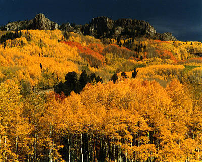 Photograph - Kebler Pass Crested Butte by Robert Lozen