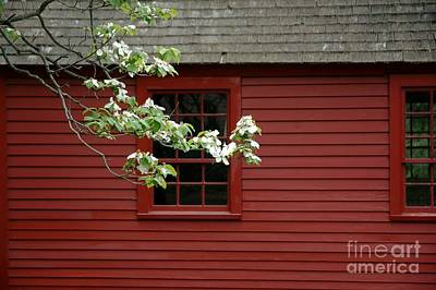 Photograph - Keeney School House by Christiane Hellner-OBrien