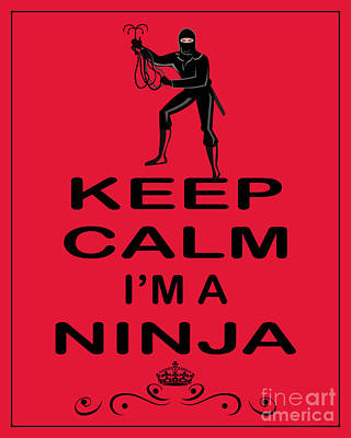 Carry On Art Photograph - Keep Calm I'm A Ninja by Daryl Macintyre