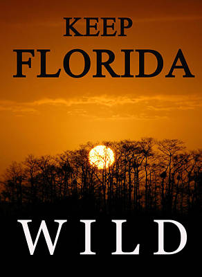 Photograph - Keep Florida Wild by David Lee Thompson