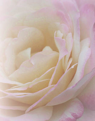 Delicately Photograph - Keeper Of Dreams by The Art Of Marilyn Ridoutt-Greene