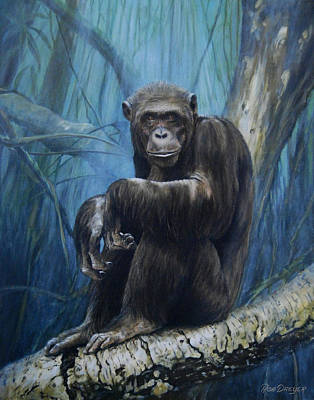 Chimpanzee Painting - Keeper Of The Congo by Dreyer Wildlife Print Collections