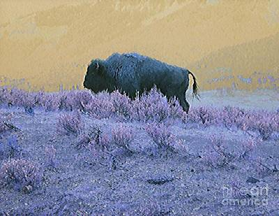 Buffalo Extinction Photograph - Keeper Of The Prairie by Ann Johndro-Collins