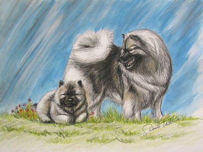 Puppy Drawing - Keeshond With Pup by Daniele Trottier