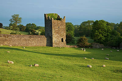Kells Priory  Count Kilkenny, Ireland Art Print