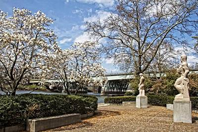 Photograph - Kelly Drive Blossom View by Alice Gipson