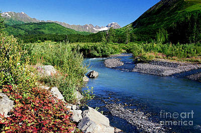 Photograph - Kenai Gem by Frank Townsley