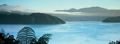 Kenepuru, Marlborough Sound, New Zealand Art Print