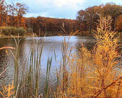 Photograph - Kennekuk Pond by Coby Cooper