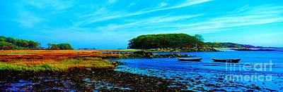 Photograph - Kennebunkport  Vaughn Island  by Tom Jelen