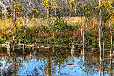 Photograph - Kent Trails Reflection by Richard Gregurich